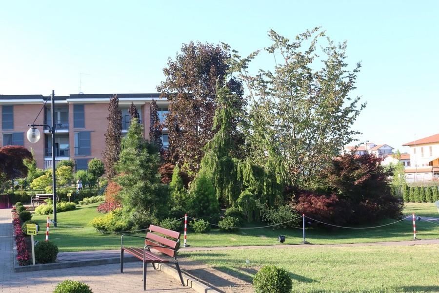 L'associazione contribuisce alla realizzazione dell'area verde di Oltre il Giardino a Vigliano